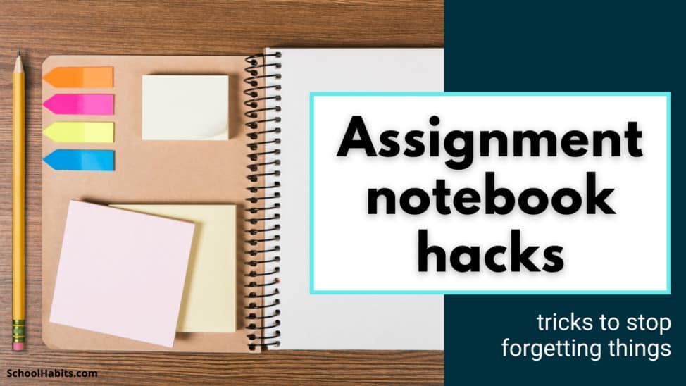 assignment notebook hack